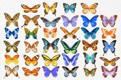 34 Hand-Painted Watercolor Butterflies Product Image 2