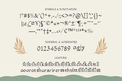 Salacia - Modern Serif Typeface Product Image 5