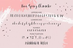 Home Spring // Handwritten Font Product Image 5