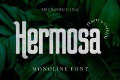 Web Font Hermosa Font Product Image 1