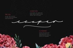 Artisans Script Product Image 4