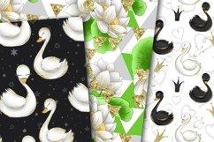 Swans digital paper Product Image 2