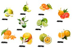 Fruits digital art collection of 10 illustrations Product Image 2
