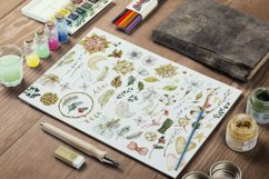 Watercolor cliparts of Christmas elements and flowers Product Image 6
