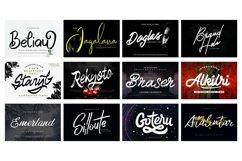 Mega Exclusive Font Bundle - 350 Font Product Image 13