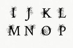Split Letters A-Z SVG, Alphabet Letters A-Z Product Image 3