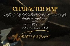 Satisfield - Signature Script Font Product Image 2