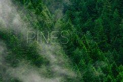 Pines Thin & Pines Thin Italic  Product Image 1