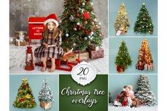 20 Christmas Tree Overlays Product Image 1