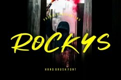 Rockys Handbrush Product Image 1