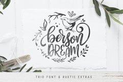 Designers font Bundle 11 Fonts Product Image 8