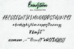 Web Font Brianstorm - Signature Font Product Image 5