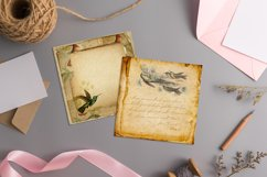 16 Antique Humming Birds Trochilidae Nature Digital Papers Product Image 4