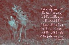 Dear Deer Font Product Image 4