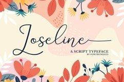 Web Font Loseline Product Image 1
