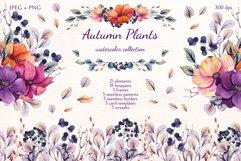 Autumn Plants Product Image 1