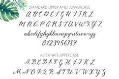 Wedding Script Font Product Image 5