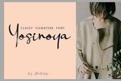 Landing Surely | Signature Font Product Image 6