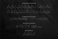 Stone Garden | Script Font Product Image 3