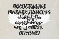 Web Font Graciella - Script Font Product Image 5