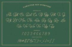 Hilantin - Monoline Font Product Image 4