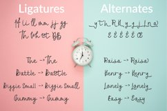 Anitta Script Font Product Image 4