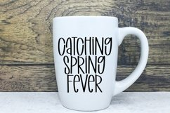 Web Font Celebrate Spring - A Quirky Handlettered Font Product Image 3