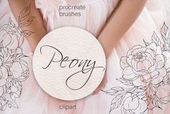 Peony flowers procreate stamp brushes, clipart Product Image 1