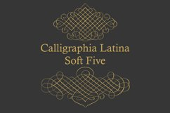 Calligraphia Latina Soft Five Product Image 4