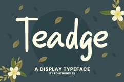 Web Font Teadge Product Image 1