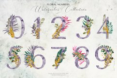 Tropical Foliage Watercolor Set Product Image 12