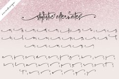 Blush Pink Handwritten Script Font Product Image 5