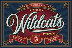 Wildcats Typeface (40% off) Product Image 1
