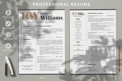 3 Page Professional Resume. Accountant Sales Resume, CV Product Image 2