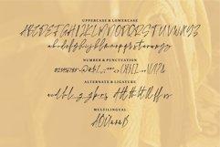 Anggilla - A Stylish Signature Font Product Image 3