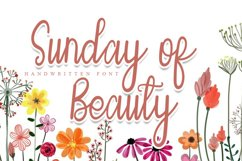Sunday of Beauty | Handwritten Font Product Image 1