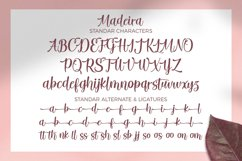 Madeira Script Product Image 2