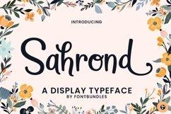 Web Font Sahrond Product Image 4