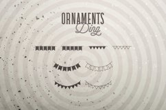 Web Font Ornaments Ding Product Image 6