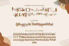 Beachfly - A Classy Serif Typeface Product Image 5