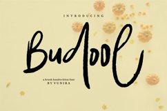 Budool | A Brush Handwritten Font Product Image 1