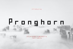 Pronghorn Font Family Product Image 1