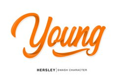 Hersley Typeface Product Image 4