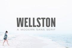 Wellston Modern Sans Serif Font Family Product Image 1
