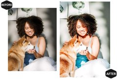 10 Pet And I Photoshop Actions And ACR Presets, Animal Ps Product Image 3