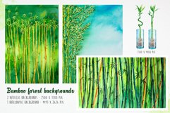 Bamboo. Watercolor illustrations. Product Image 6