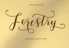 Modern Script Font Bundle Product Image 13