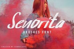 Senorita Brushes Font Product Image 1
