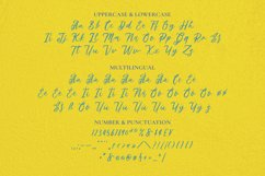 Springtown Font Product Image 5