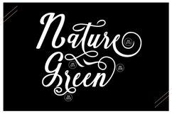 Natural Script Product Image 2